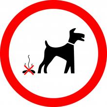 psí exkrementy